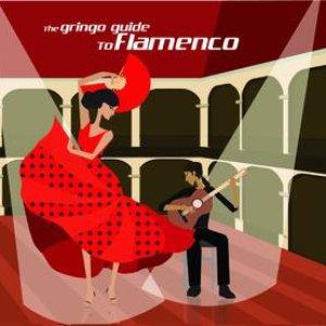 Imagem de 'Gringo Guide To Flamenco'
