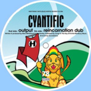 Image for 'NHS78: Output / Reincarnation Dub'