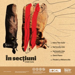 Image for '[LCL09] In Sectiuni'