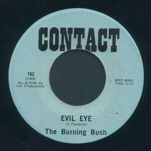 Image for 'The Burning Bush'