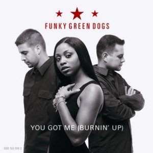 Image for 'You Got Me (Burnin' Up)'