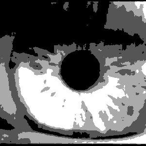 Image for 'Brain Cellar'