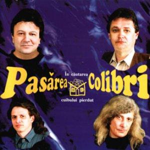 Image for 'In Cautarea Cuibului Pierdut'