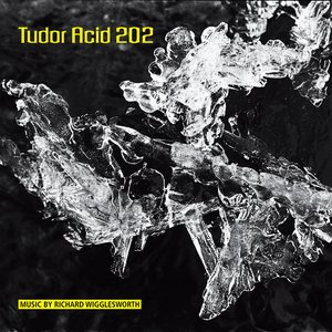 Image for 'Tudor Acid 202'