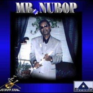 Image for 'MR.NuBOP(Compilation)   BR/NuBOP.COM RECORDS'