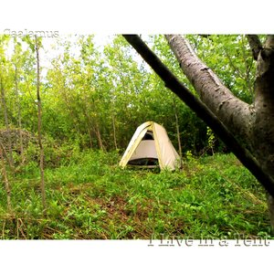 Image for 'I Live in a Tent'