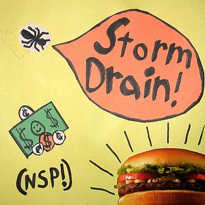 Image for 'Storm Drain'