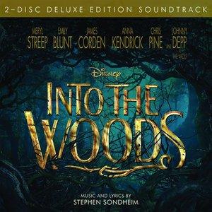 Bild für 'Into the Woods'