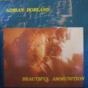 Imagen de 'Beautiful Ammunition'