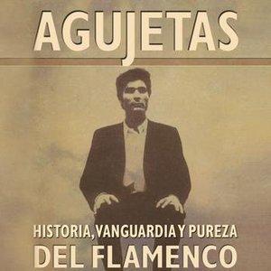 Image for 'Fandangos En El Bujio'