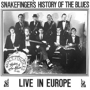 Image for 'Snakefinger's History Of The Blues- Live In Europe'