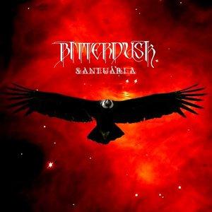 Image for 'Santuaria'