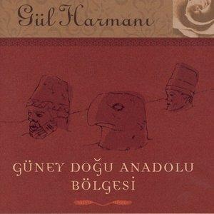Image for 'Gul Harmani Guney Dogu Anadolu Bolgesi'