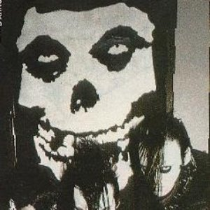Bild för 'Horror punk'