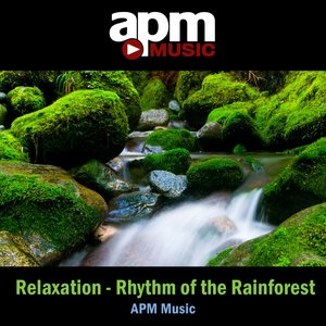 Image for 'Relaxation - Rhythm of the Rainforest'