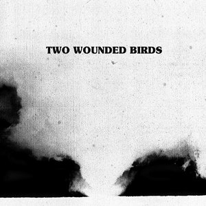 Image pour 'Two Wounded Birds'