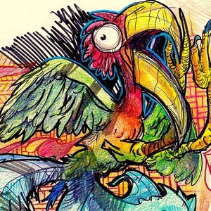 Image for 'The Exotic Bird Exits (For Yancey)'