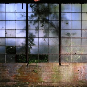 Image for 'A Stillness Rarely Seen'