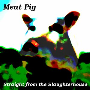 Image for 'Straight From the Slaughterhouse'