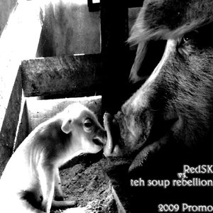 Image for '2009 Promo'