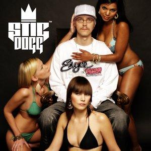Image for 'Stig Dogg'