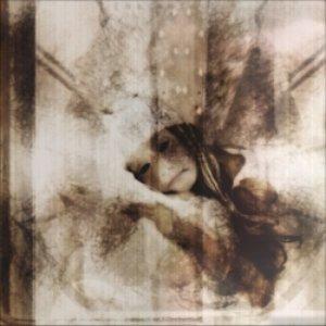 Image for 'DTRASH089 - Reinvent Self-Destruction'