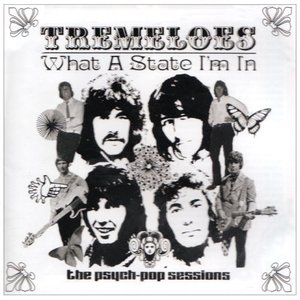 Image for 'What a State I'm In: The Psych Pop Sessions'