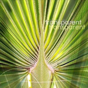 Image for 'Transparent'