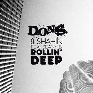 Image for 'D.O.N.S. & SHAHIN FEAT. SEANY B.'