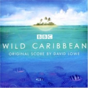 Image for 'Wild Caribbean - Original Music By David Lowe'