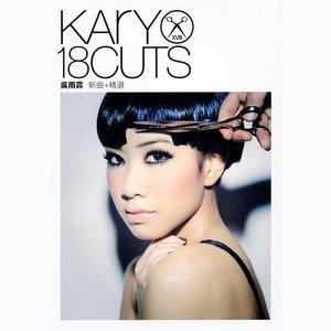 Image pour 'Kary 18 Cuts'