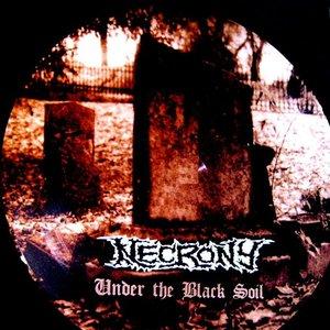 Bild für 'Under The Black Soil'