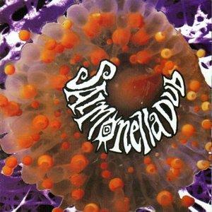 Image for 'Salmonella Dub'