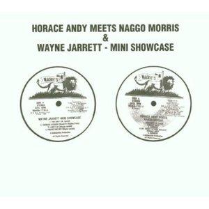 Immagine per 'Horace Andy Meets Naggo Morris & Wayne Jarrett'