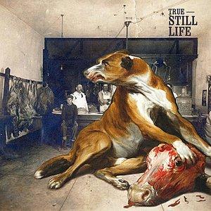 Image for 'Still Life'