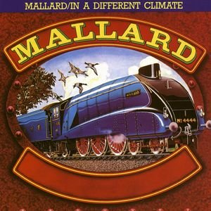 Image pour 'Mallard / In A Different Climate'