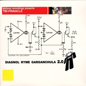 Image for 'Diagonol Ryme Garaganchula 2.0'
