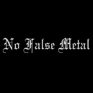 Image pour 'No False Metal'