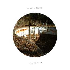 Image for 'Wisdom Teeth/Milkshakes Split'