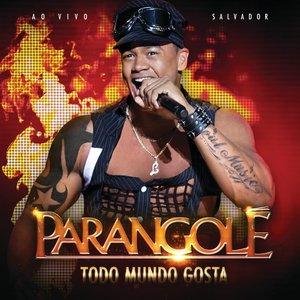 Image pour 'Todo Mundo Gosta - Ao Vivo'