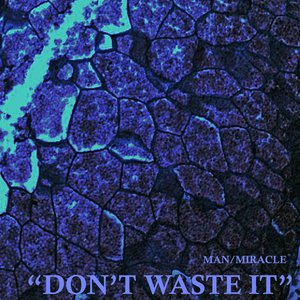 Immagine per 'Don't Waste It'