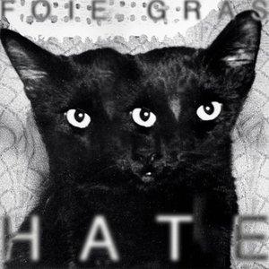 Bild für 'HATE'