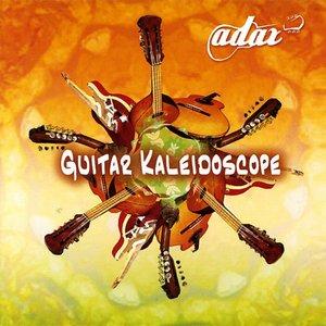 Immagine per 'Guitar Kaleidoscope'
