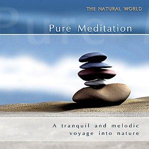 Image for 'Pure Meditation'