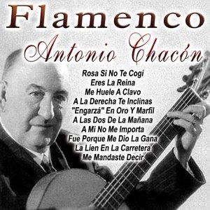 Bild für 'Flamenco'