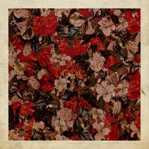 Immagine per 'Future Fears EP'