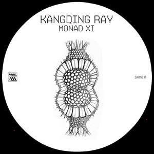 Image for 'Monad XI'
