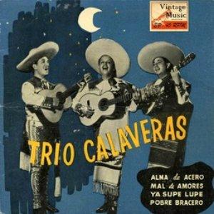 Imagen de 'Vintage México Nº22 - EPs Collectors'