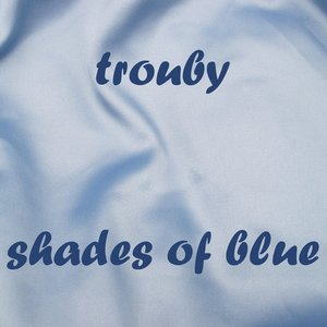 Image for 'shades of blue (2008)'