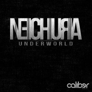 Image for 'Nechura'